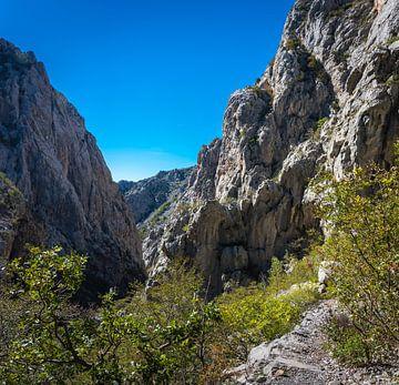 Schlucht in Nationalpark Paklenica, Kroatien von Rietje Bulthuis