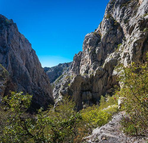 Kloof in Paklenica Nationaal Park, Kroatië