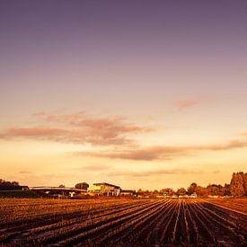 Marnemoende au coucher du soleil, IJsselstein sur Tony Buijse