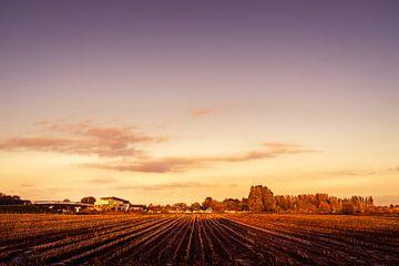 Marnemoende bij zonsondergang, IJsselstein van Tony Buijse