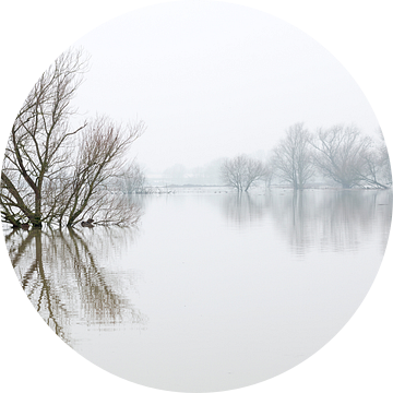 Hoog water in Brabant van Noortje Muller