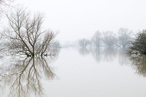 Hoog water in Brabant