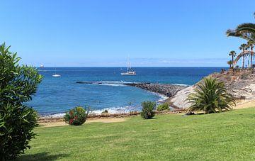 Zeezicht in azuurblauw en grasgroen - Tenerife von Sander de Groot