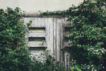 Alte Tür im Wald von Karlijne Geudens