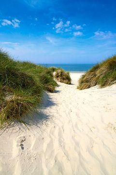 Idyllischer Weg zum Strand von Reiner Würz / RWFotoArt
