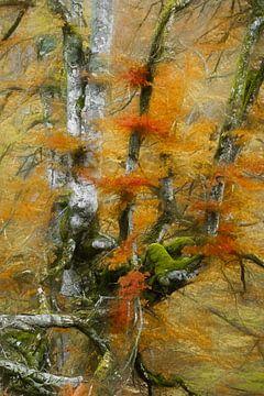 Herbstpalette von Lars van de Goor