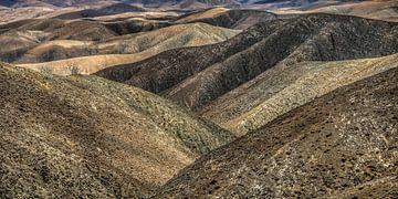 Landschap Fuerteventura, Canarische Eilanden, Spanje. von Harrie Muis