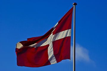Vlag van Denemarken, Danebrog, Dannebrog (2) van