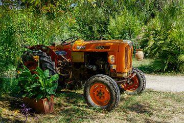 Tractor in Italiaanse wijngaard van Frans Hettema