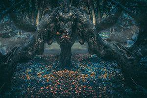 De draak in het duistere woud