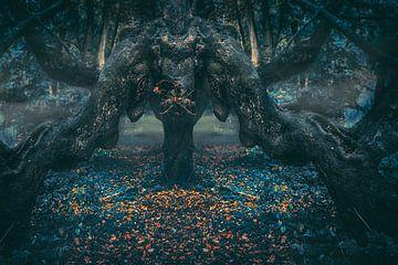 De draak in het duistere woud van