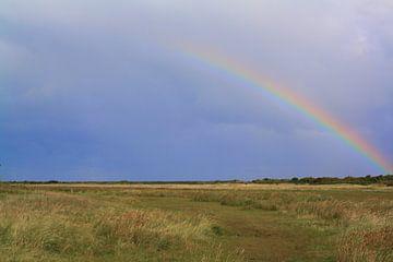 Regenboog van Isabel van Esch