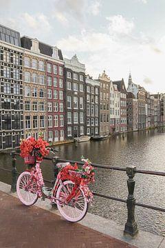 Rosa Fahrrad mit Blumen in Amsterdam von Henrike Schenk