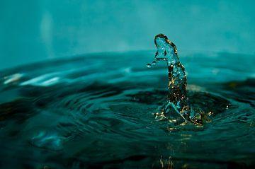 Water lady von Merijn Koster