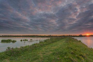 Sonnenuntergang in der Nähe von Werkendamse de Jantjes Platte in den Biesbosch