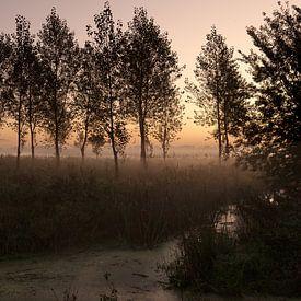 In the dark of night von Marijke van Eijkeren