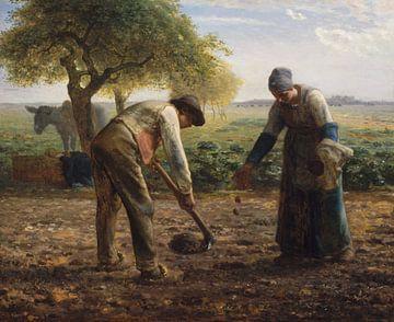 Kartoffelpflanzer, Jean-François Millet
