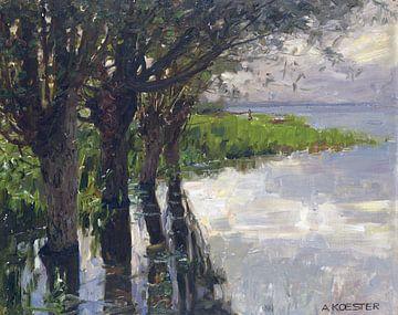 Reichenau, Weiden am See, Sonne, ALEXANDER KOESTER, Um 1909-1914 von Atelier Liesjes