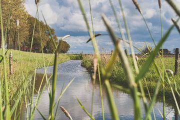 Blick entlang des Holländischen Deiches von Fotografiecor .nl