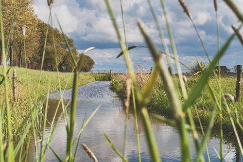 Uitzicht langs de Hollandse dijk