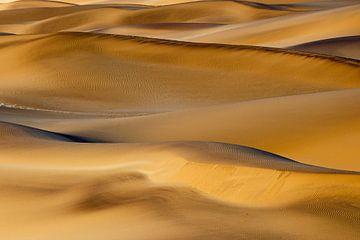 Dünen Namibias von Britta Kärcher