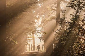 Zonnegroet! van Arthur Puls Photography