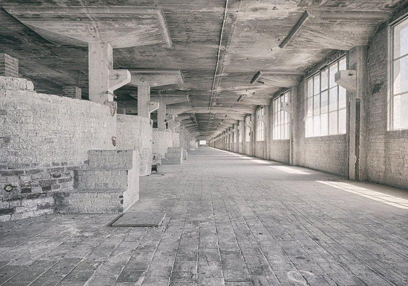 Verlaten plekken: Sphinx fabriek Maastricht Eiffelgebouw bassin en vensters. van Olaf Kramer