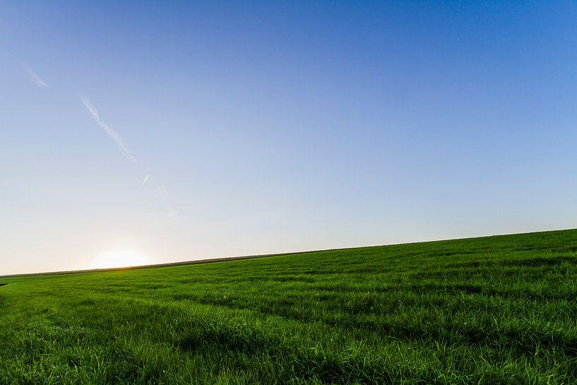 Green fields van Kim Dalmeijer