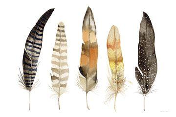 Natuurlijke veren, Kathleen Parr McKenna van Wild Apple