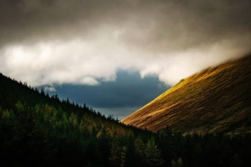 Bergen en bomen in Schotland - Cairngorms National Park van RUUDC Fotografie