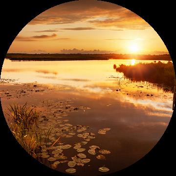Gouden Zonsondergang De Onlanden van R Smallenbroek