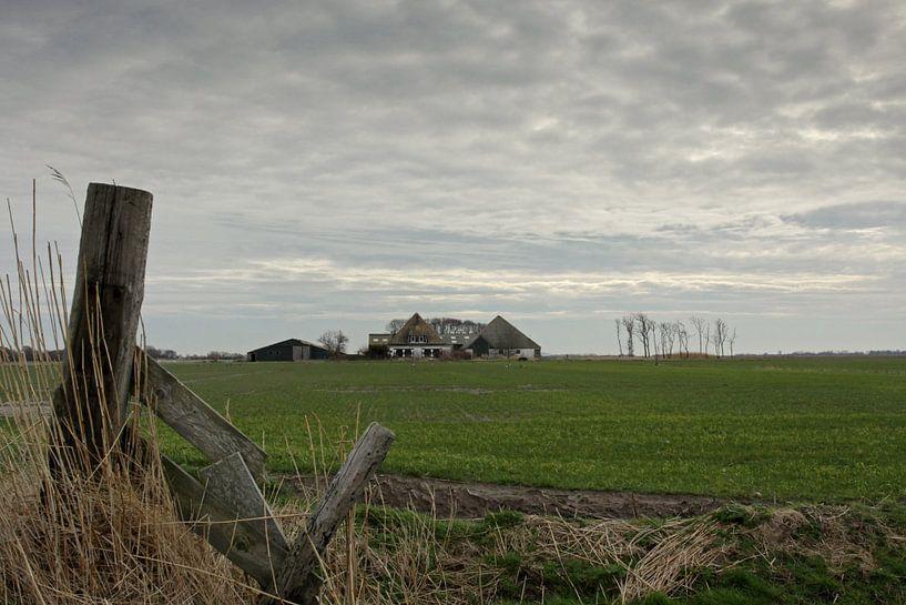 Boerderij op Texel van Antwan Janssen