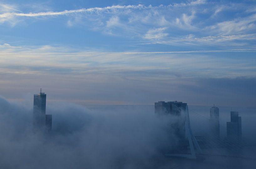 Rotterdam in blauw en wit van Marcel van Duinen