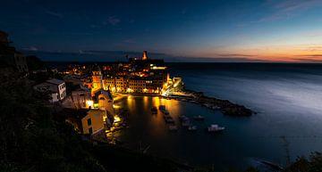 Cinque Terre in het donker van Damien Franscoise