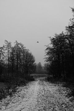 Winter Horror Pad van Emma Susan van den Berg