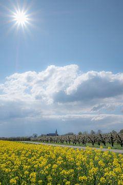 Kerk Erichem met fruitboomgaard en koolzaadveld von Moetwil en van Dijk - Fotografie