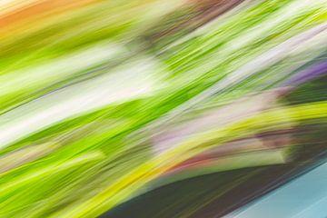 Mischung aus Gras und Mehl von Jan Peter Jansen