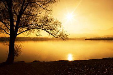 Silhoutte bij zonsondergang van Frank Herrmann