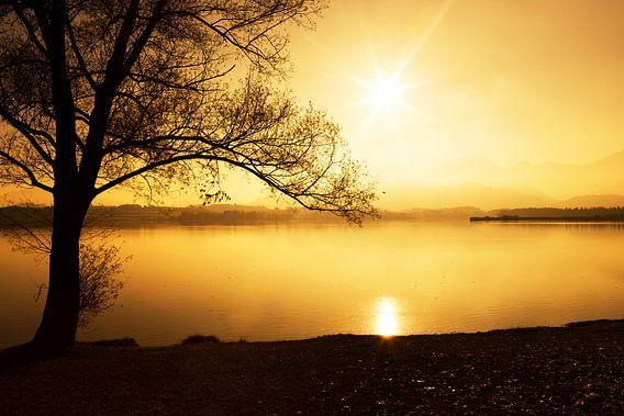 Silhoutte bij zonsondergang
