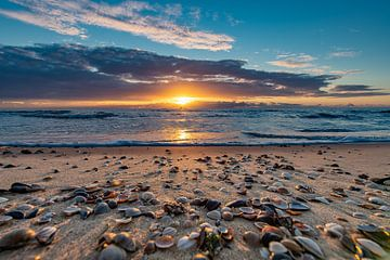 Schelpen bij zonsondergang van Alex Hiemstra