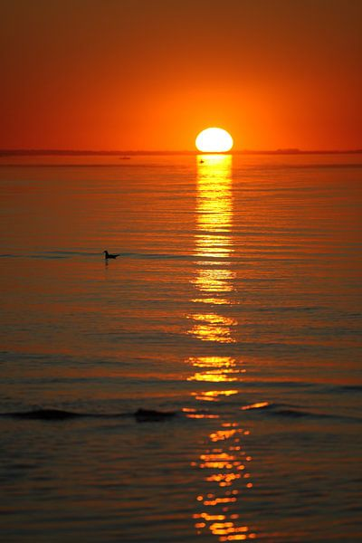 Sonnenuntergang von Jana Behr
