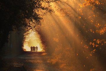 Herbstlicher Schullauf - Gasselte, Drenthe von Bas Meelker