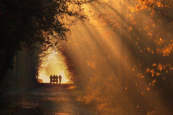 Autumn school run - Gasselte, Drenthe