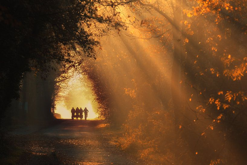 Autumn school run - Gasselte, Drenthe van Bas Meelker