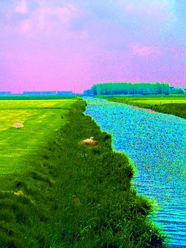 Broedende zwaan aan waterkant van Frank Kleijn