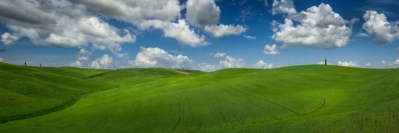 Panorama  van de golvende groene heuvels in Toscane van Edwin Mooijaart