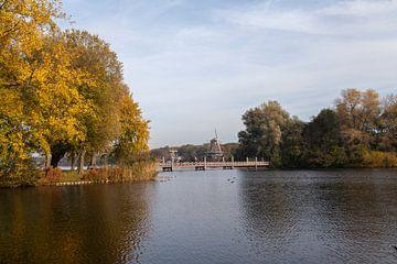 Herbst in der Kralinger Pfütze von Nel Diepstraten