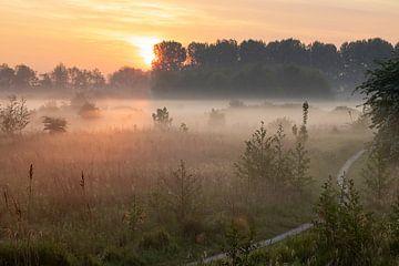 Grondmist boven de velden van de Broekpolder van Bas Ronteltap