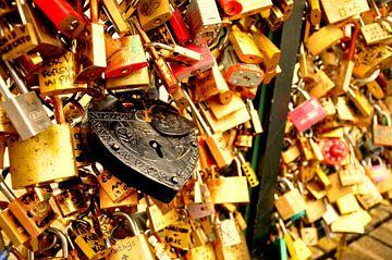 Parijs / Lock of Love /  van Sabrina Varao Carreiro