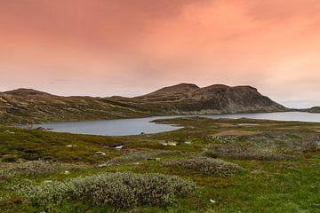 Gaustatoppen - Noorwegen van Evy De Wit